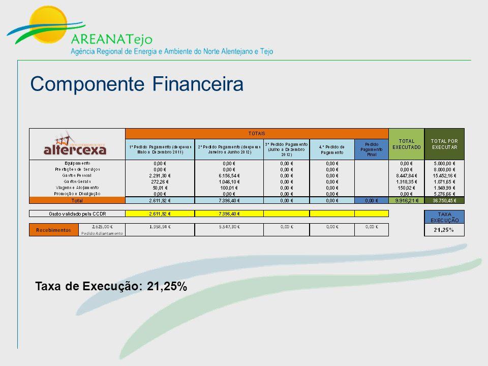 Componente Financeira Taxa de Execução: 21,25%