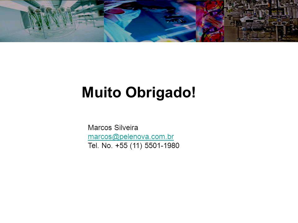 Muito Obrigado! Marcos Silveira marcos@pelenova.com.br Tel. No. +55 (11) 5501-1980