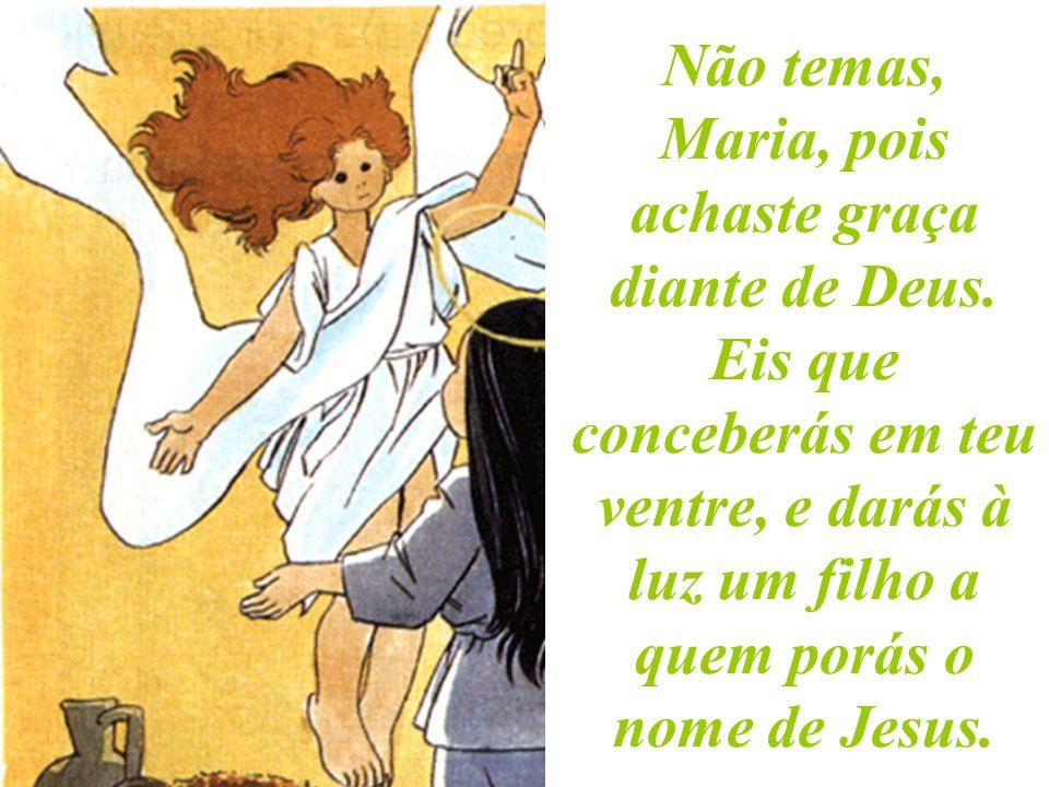 O anjo disse-lhe: Salve, ó cheia de graça. O Senhor é contigo; tu foste a escolhida entre as mulheres para seres a Mãe de Deus.