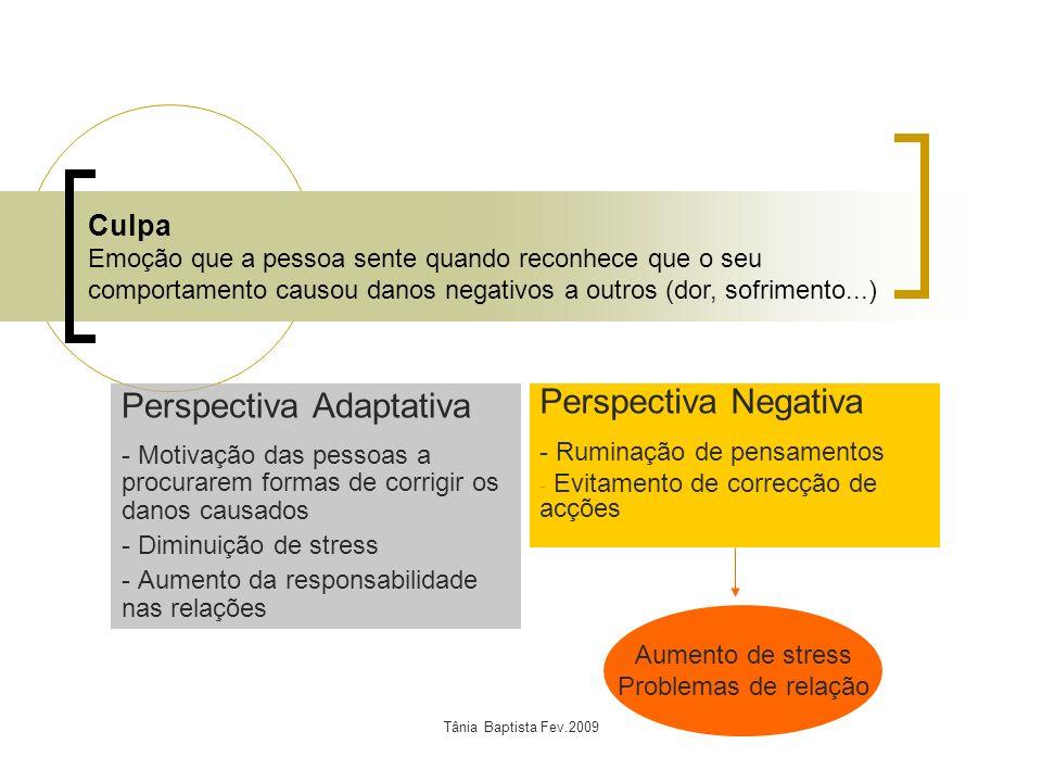Tânia Baptista Fev.2009 Perspectiva Adaptativa - Motivação das pessoas a procurarem formas de corrigir os danos causados - Diminuição de stress - Aume