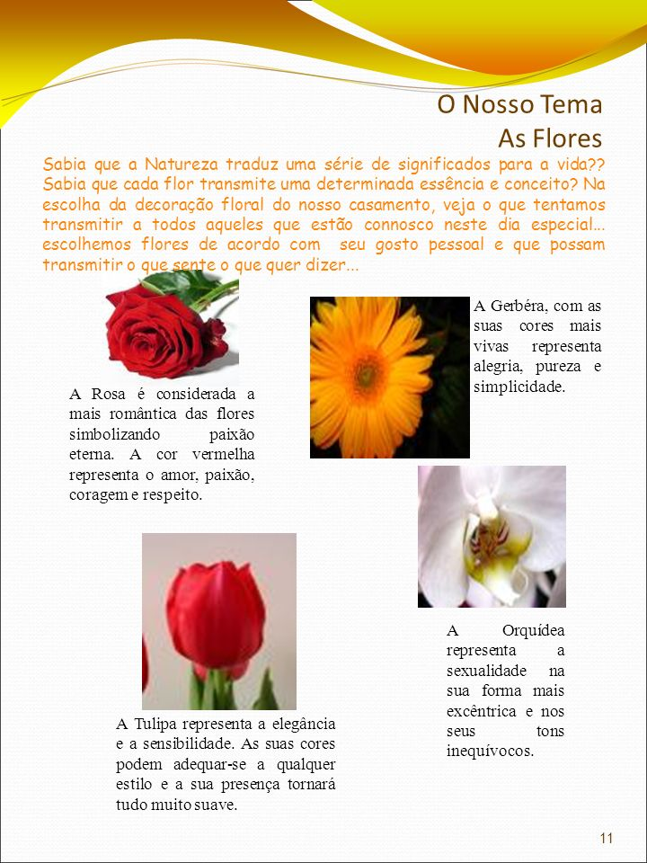O Nosso Tema As Flores A Rosa é considerada a mais romântica das flores simbolizando paixão eterna. A cor vermelha representa o amor, paixão, coragem