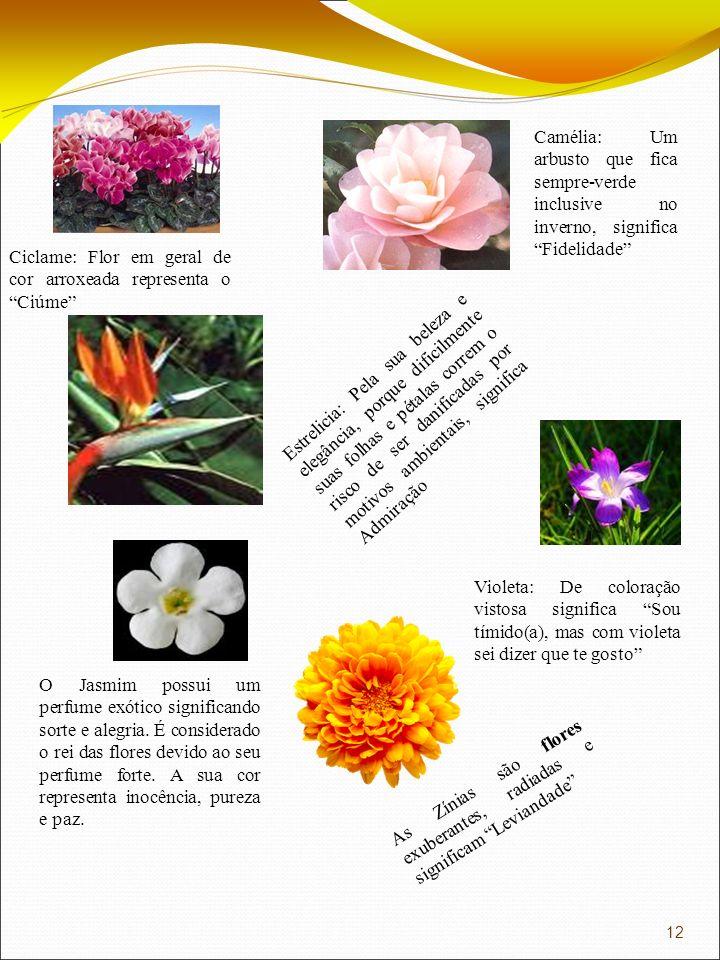 Camélia: Um arbusto que fica sempre-verde inclusive no inverno, significa Fidelidade Ciclame: Flor em geral de cor arroxeada representa o Ciúme Estrel