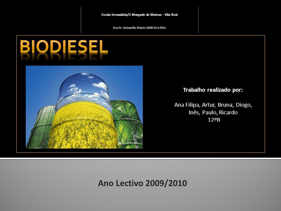 Os biocombustíveis deverão exercer um papel muito importante mundialmente no futuro, motivada principalmente por considerações de ordem ambiental, pela elevação dos preços do petróleo no mercado internacional e pela incerteza na oferta de combustíveis fósseis num médio e longo prazo.