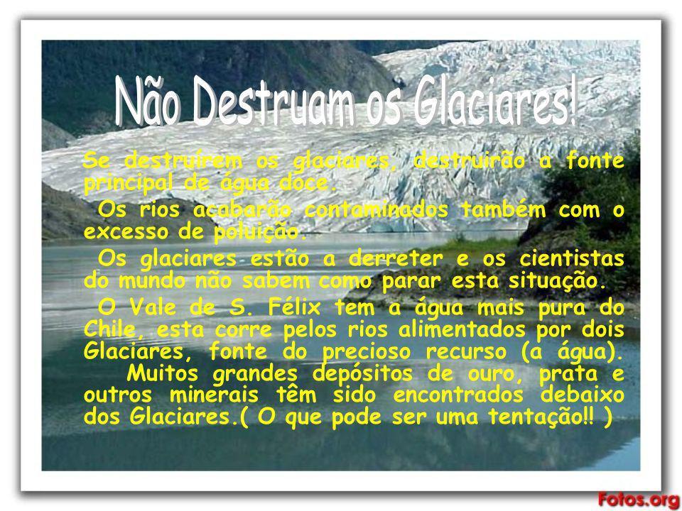 Se destruírem os glaciares, destruirão a fonte principal de água doce. Os rios acabarão contaminados também com o excesso de poluição. Os glaciares es