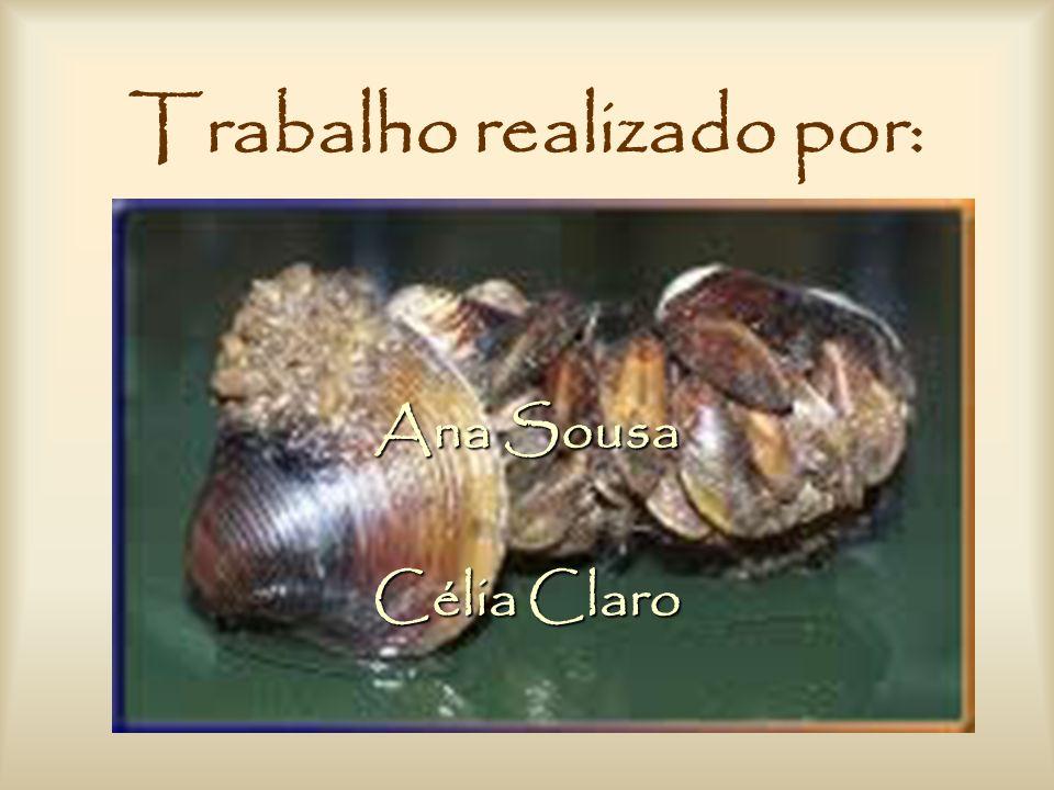 Trabalho realizado por: Ana Sousa Célia Claro
