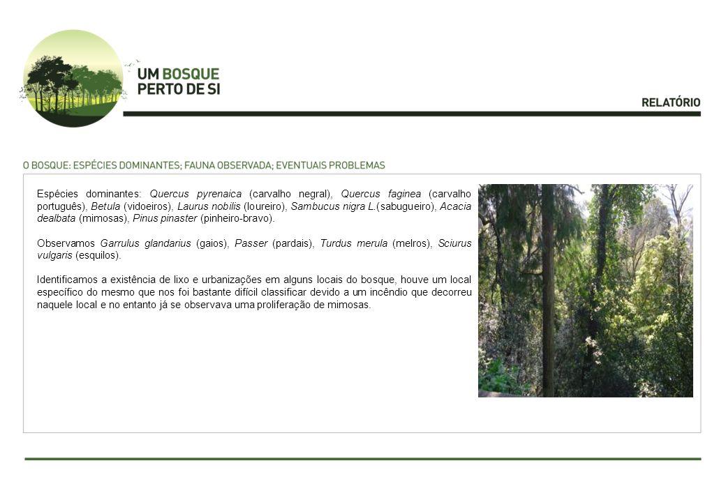 Espécies dominantes: Quercus pyrenaica (carvalho negral), Quercus faginea (carvalho português), Betula (vidoeiros), Laurus nobilis (loureiro), Sambucus nigra L.(sabugueiro), Acacia dealbata (mimosas), Pinus pinaster (pinheiro-bravo).