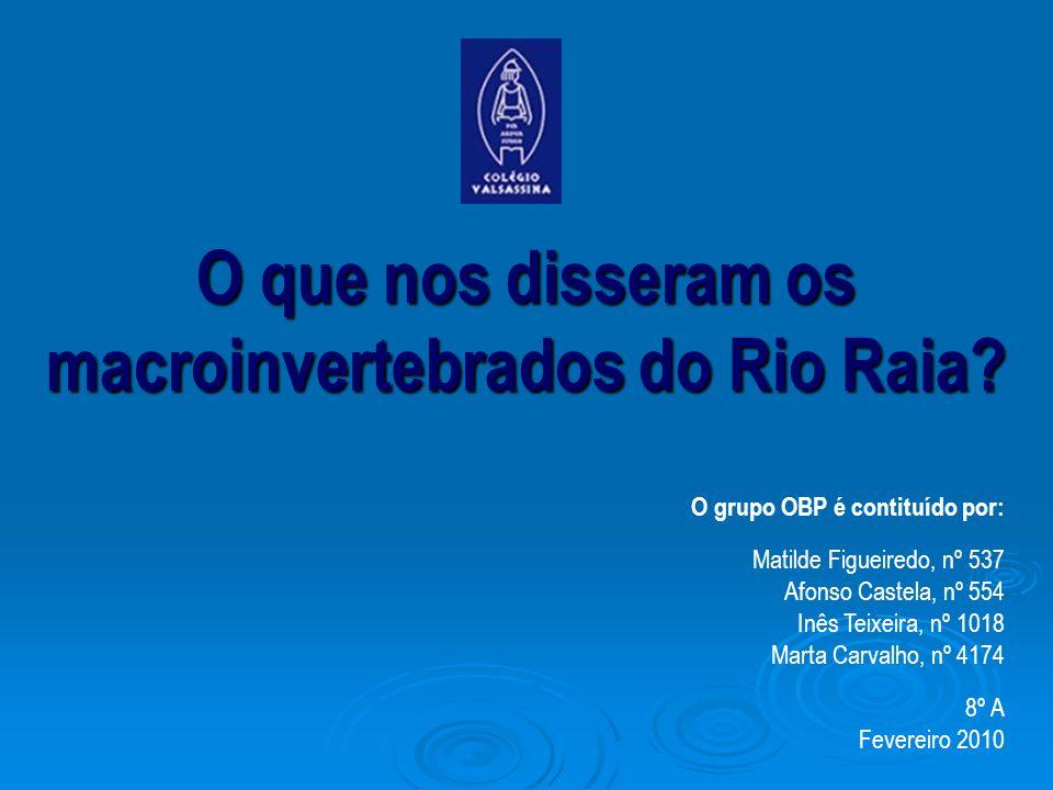O que nos disseram os macroinvertebrados do Rio Raia? O grupo OBP é contituído por: Matilde Figueiredo, nº 537 Afonso Castela, nº 554 Inês Teixeira, n