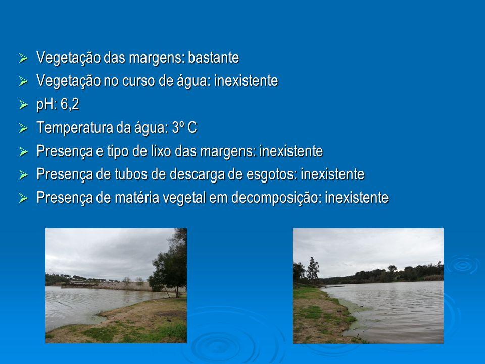 Vegetação das margens: bastante Vegetação das margens: bastante Vegetação no curso de água: inexistente Vegetação no curso de água: inexistente pH: 6,