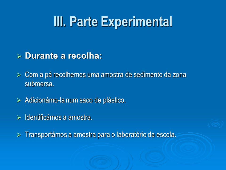 III. Parte Experimental Durante a recolha: Durante a recolha: Com a pá recolhemos uma amostra de sedimento da zona submersa. Com a pá recolhemos uma a
