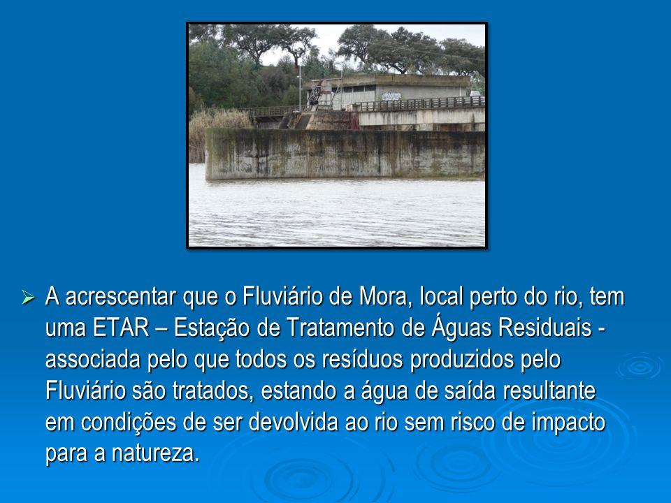A acrescentar que o Fluviário de Mora, local perto do rio, tem uma ETAR – Estação de Tratamento de Águas Residuais - associada pelo que todos os resíd