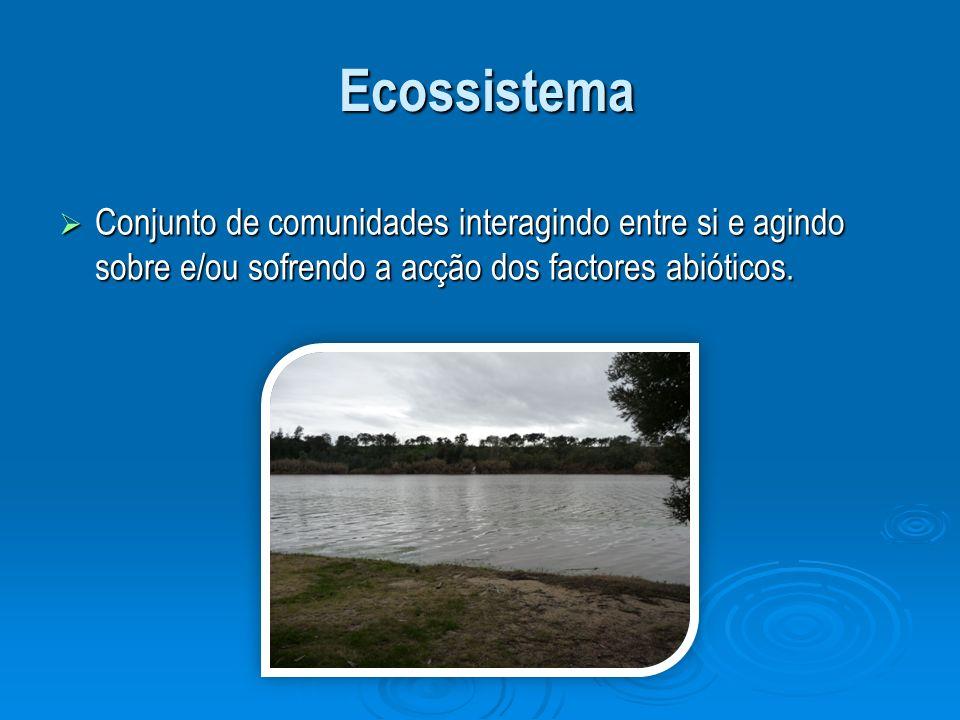Ecossistema Ecossistema Conjunto de comunidades interagindo entre si e agindo sobre e/ou sofrendo a acção dos factores abióticos. Conjunto de comunida