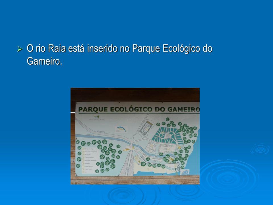 O rio Raia está inserido no Parque Ecológico do Gameiro. O rio Raia está inserido no Parque Ecológico do Gameiro.