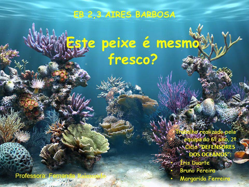 1 Trabalho realizado pela equipa do 6º ano, 2º Ciclo DEFENSORES DOS OCEANOS: Íris Duarte Bruno Pereira Margarida Ferreira EB 2,3 AIRES BARBOSA Profess