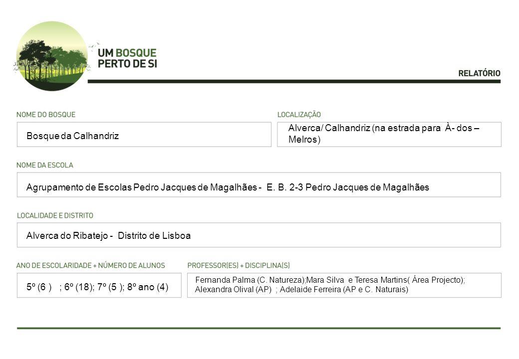 Alverca/ Calhandriz (na estrada para À- dos – Melros) Agrupamento de Escolas Pedro Jacques de Magalhães - E. B. 2-3 Pedro Jacques de Magalhães Alverca