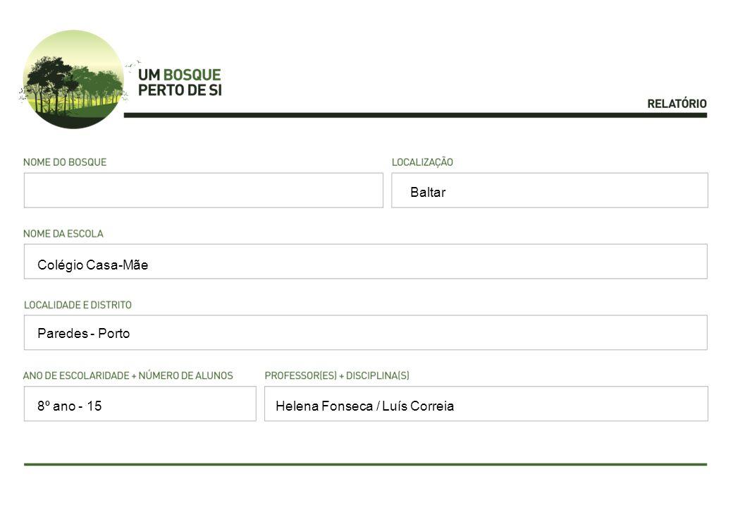 Baltar Colégio Casa-Mãe Paredes - Porto Helena Fonseca / Luís Correia8º ano - 15