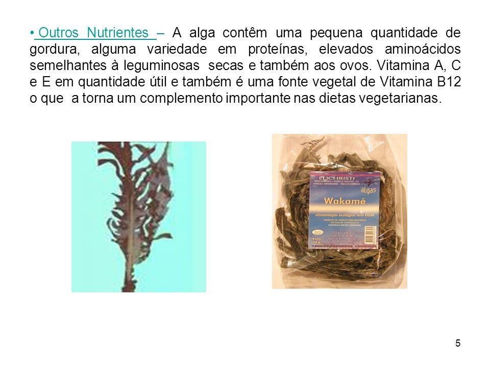 5 Outros Nutrientes – A alga contêm uma pequena quantidade de gordura, alguma variedade em proteínas, elevados aminoácidos semelhantes à leguminosas s