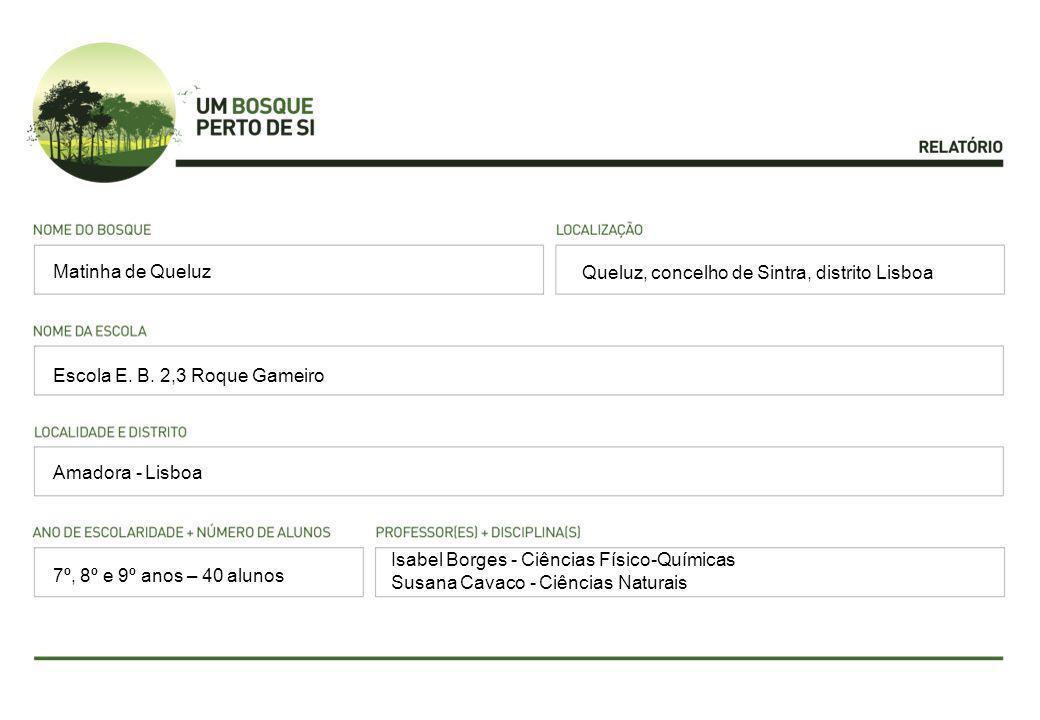 Queluz, concelho de Sintra, distrito Lisboa Escola E. B. 2,3 Roque Gameiro Amadora - Lisboa Isabel Borges - Ciências Físico-Químicas Susana Cavaco - C