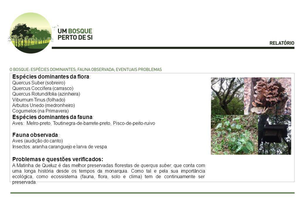 Espécies dominantes da flora : Quercus Suber (sobreiro) Quercus Coccifera (carrasco) Quercus Rotundifolia (azinheira) Viburnum Tinus (folhado) Arbutos