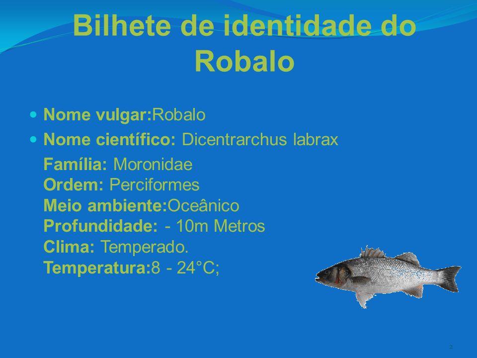 3 O Robalo - alimentação O robalo alimenta-se de pequenos peixes e de uma grande variedade de invertebrados e crustáceos (camarões, caranguejos, lulas, entre outros...