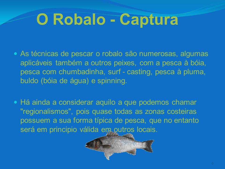 6 O Robalo - Captura As técnicas de pescar o robalo são numerosas, algumas aplicáveis também a outros peixes, com a pesca à bóia, pesca com chumbadinh