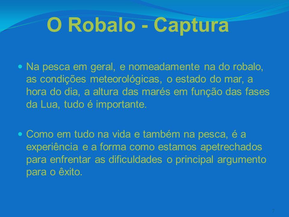 8 O Robalo - Características O robalo e um peixe de água salgada.