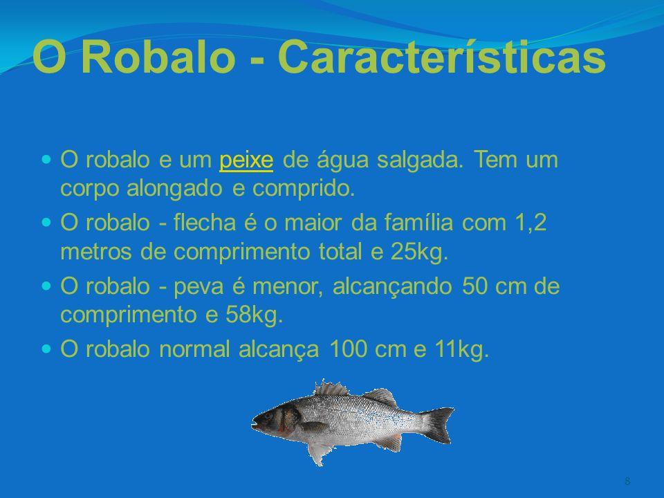 8 O Robalo - Características O robalo e um peixe de água salgada. Tem um corpo alongado e comprido.peixe O robalo - flecha é o maior da família com 1,