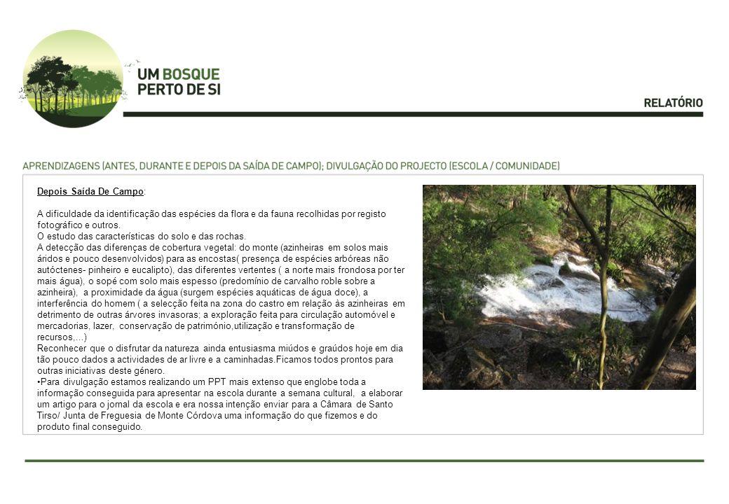 Depois Saída De Campo: A dificuldade da identificação das espécies da flora e da fauna recolhidas por registo fotográfico e outros.