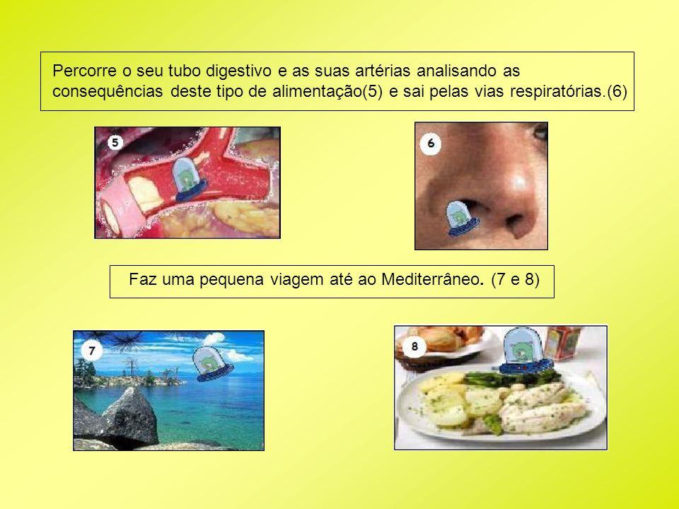 Faz uma pequena viagem até ao Mediterrâneo. (7 e 8) Percorre o seu tubo digestivo e as suas artérias analisando as consequências deste tipo de aliment
