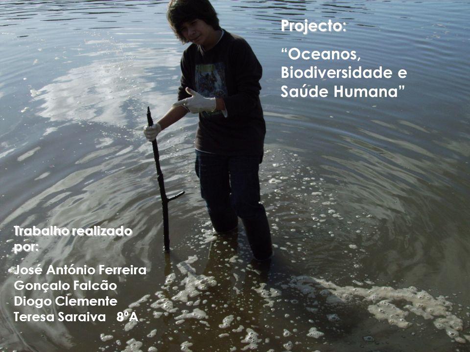 Projecto: Oceanos, Biodiversidade e Saúde Humana Trabalho realizado por: José António Ferreira Gonçalo Falcão Diogo Clemente Teresa Saraiva 8ºA