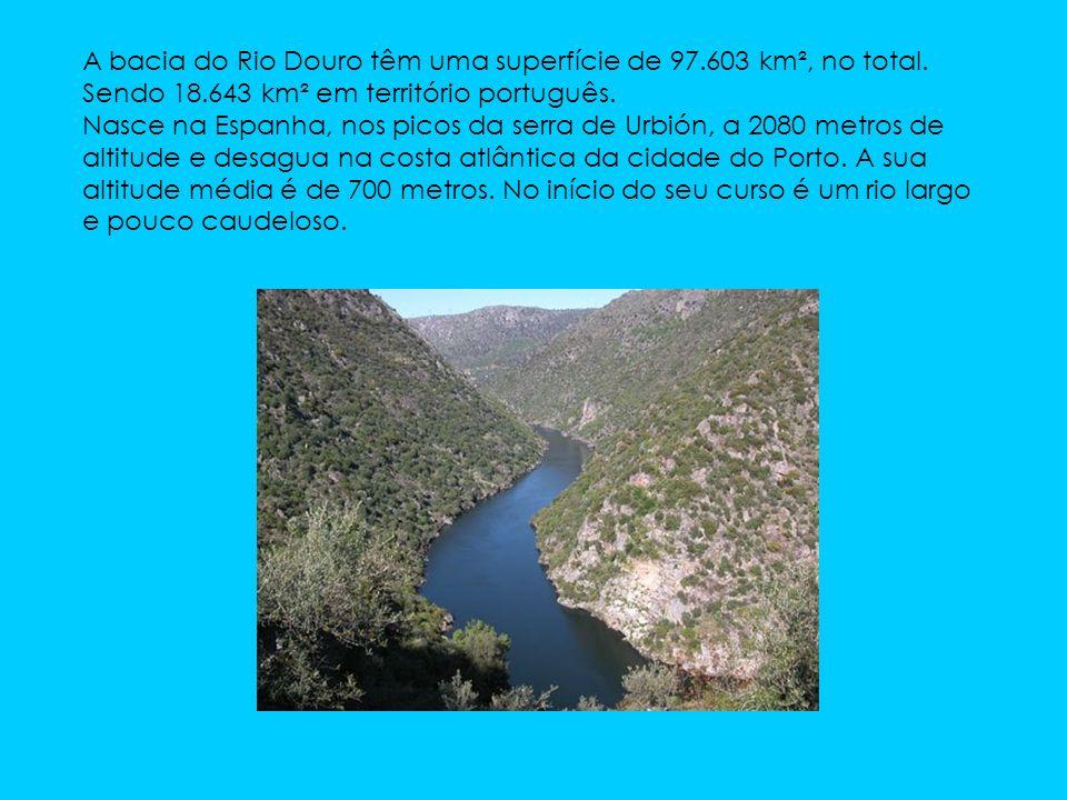 A bacia do Rio Douro têm uma superfície de 97.603 km², no total.