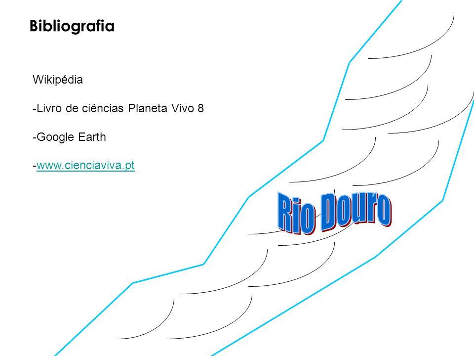 Wikipédia -Livro de ciências Planeta Vivo 8 -Google Earth -www.cienciaviva.ptwww.cienciaviva.pt Bibliografia