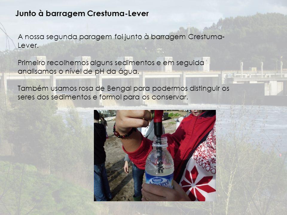 Junto à barragem Crestuma-Lever A nossa segunda paragem foi junto à barragem Crestuma- Lever.