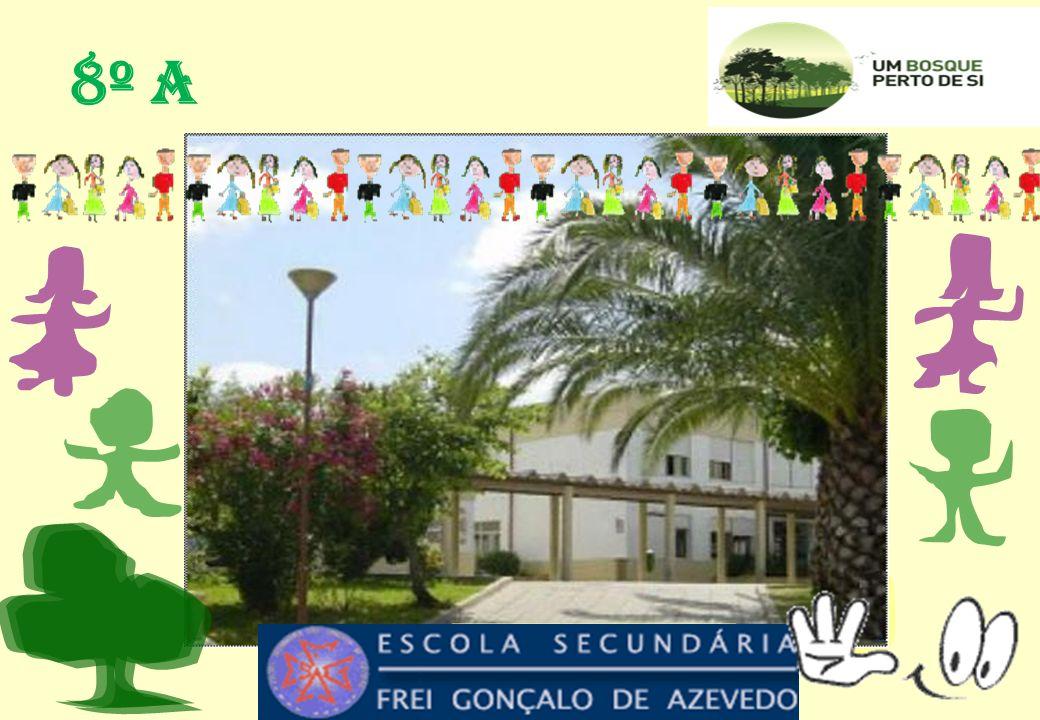 Lagoa Azul –38º463,97N e 9º2350,29W AGRUPAMENTO DE ESCOLAS FREI GONÇALO DE AZEVEDO S.
