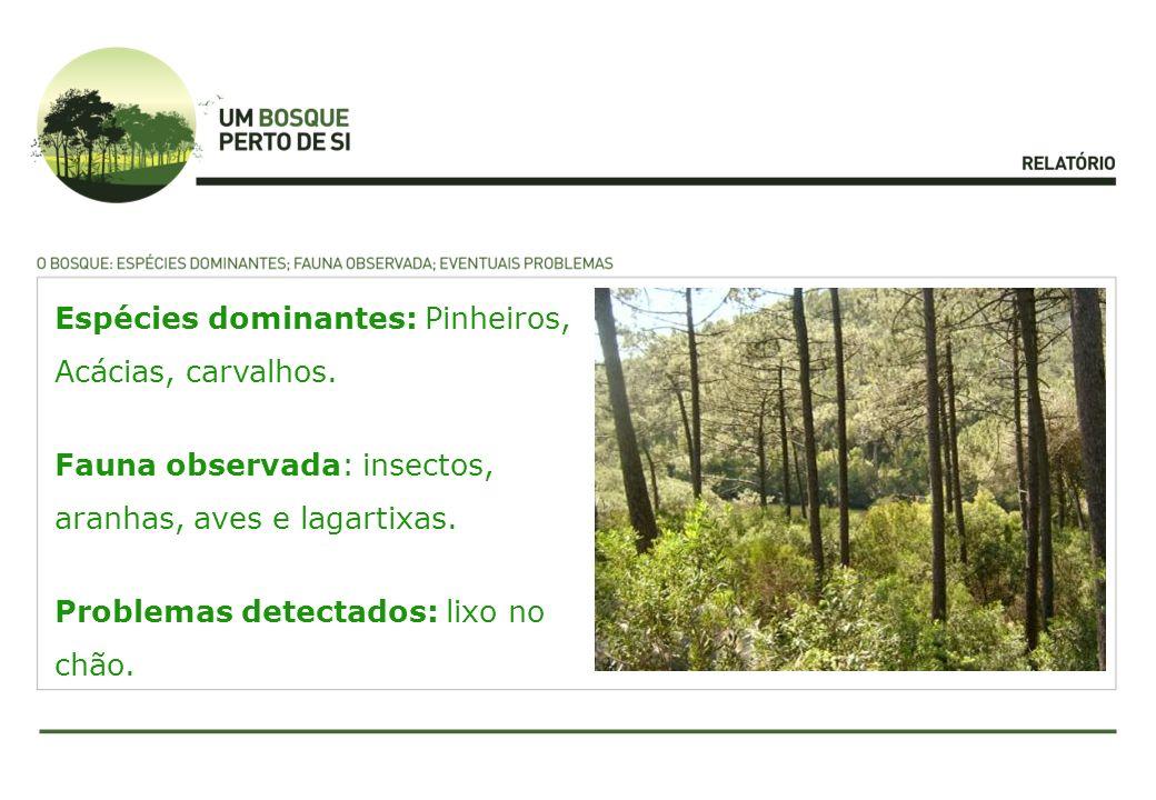 Espécies dominantes: Pinheiros, Acácias, carvalhos. Fauna observada: insectos, aranhas, aves e lagartixas. Problemas detectados: lixo no chão.