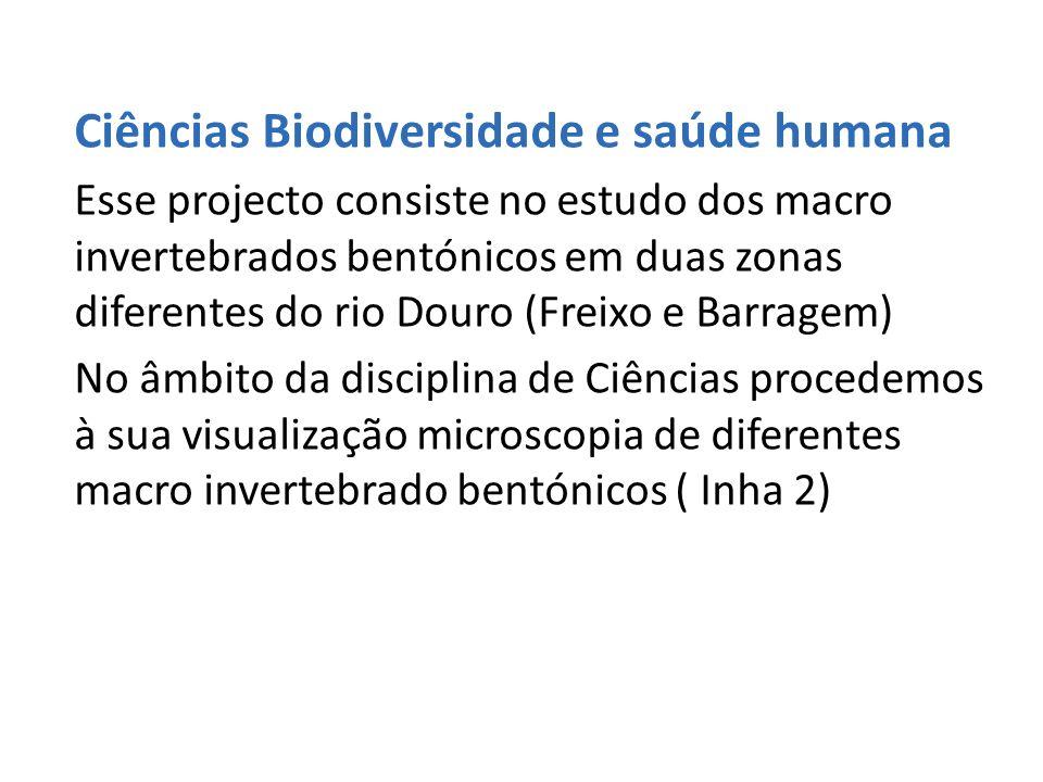 Ciências Biodiversidade e saúde humana Esse projecto consiste no estudo dos macro invertebrados bentónicos em duas zonas diferentes do rio Douro (Frei