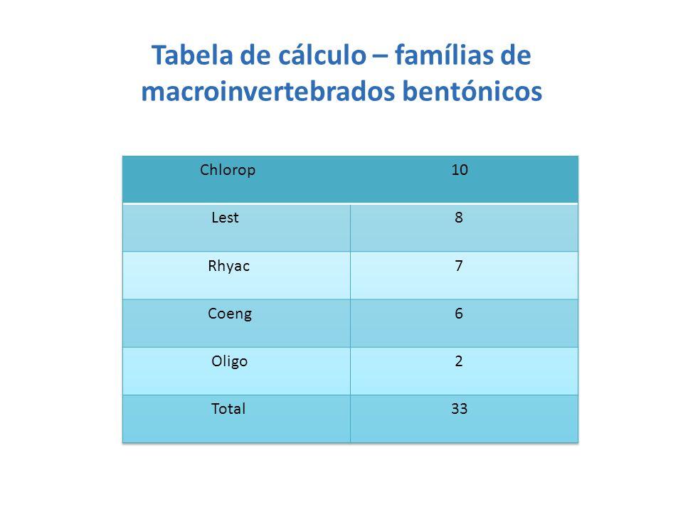 Tabela de cálculo – famílias de macroinvertebrados bentónicos