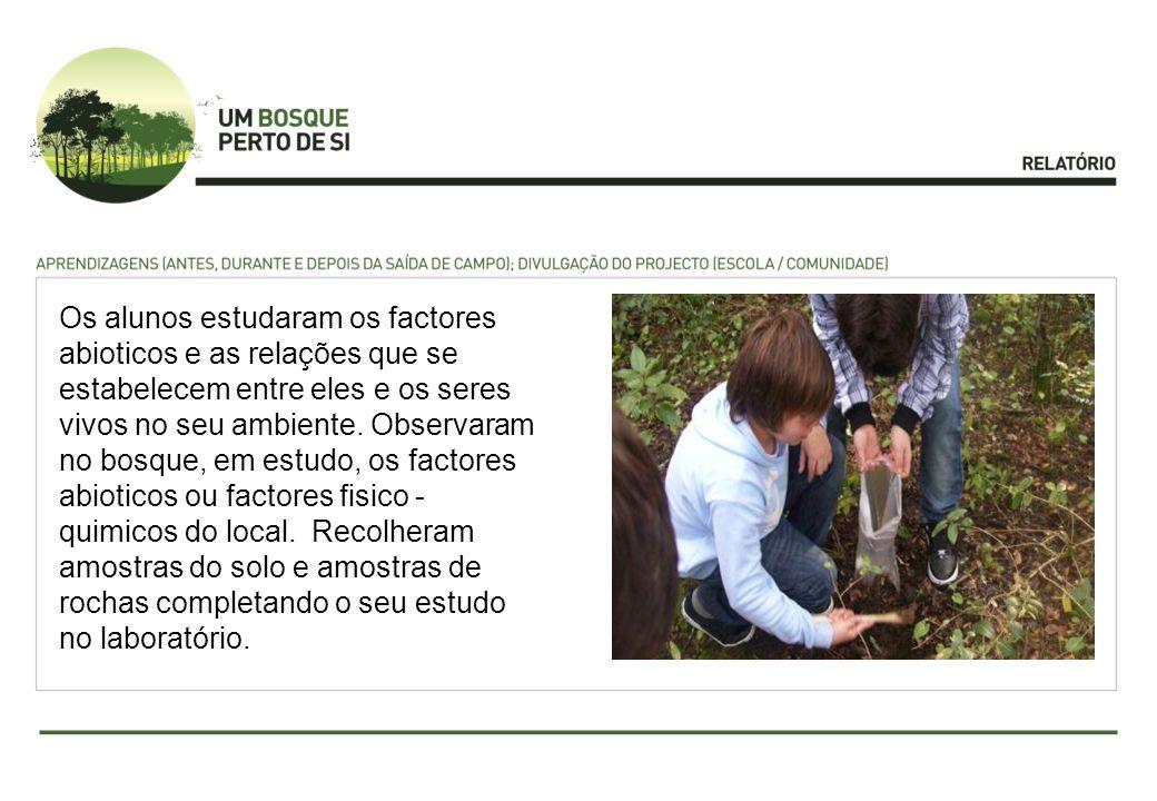 Os alunos estudaram os factores abioticos e as relações que se estabelecem entre eles e os seres vivos no seu ambiente. Observaram no bosque, em estud