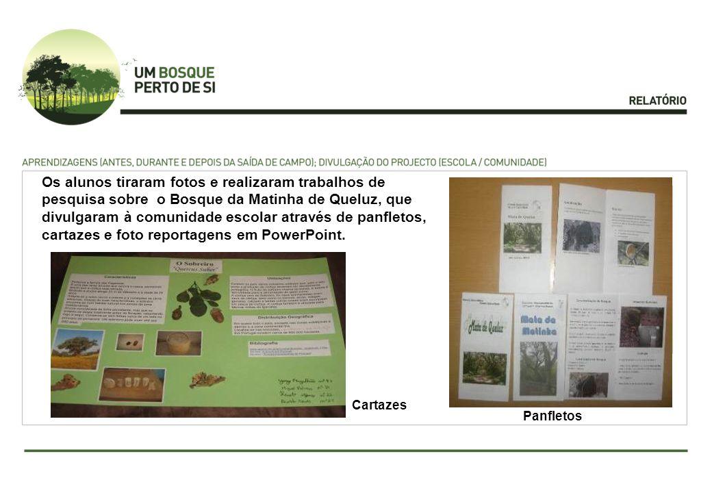 Os alunos tiraram fotos e realizaram trabalhos de pesquisa sobre o Bosque da Matinha de Queluz, que divulgaram à comunidade escolar através de panflet
