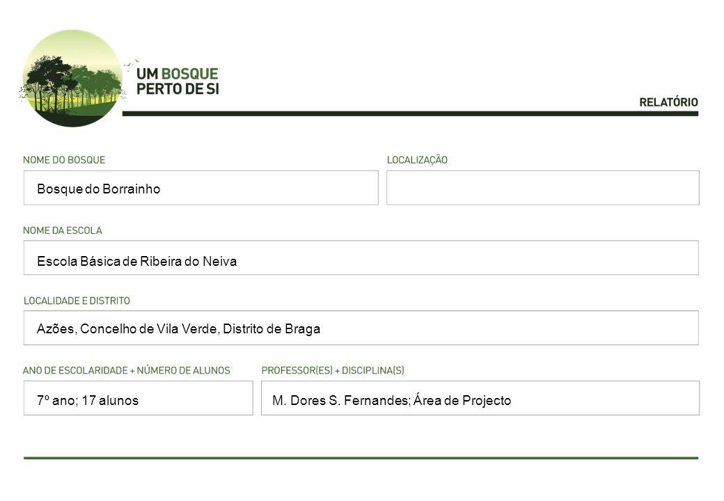 Espécies dominantes: Carvalho alvarinho (Quercus robur); Eucalipto (Eucalipto globulus); Acácia-austrália (Acacia melanoxylon); Pinheiro bravo (Pinus pinaster); Castanheiro (Castanea sativa); Azevinho (Ilex aquifolium); Gilbardeira (Ruscus aculeatus); Polipódio (Polypodium vulgare); Feto pente (Blechnum spicant); Fento do monte (Pteridium aquilinum); Falso feto macho (Dryopteris affinis); Feto de cabelinho (Culcita macrocarpa); Umbigo de Vénus (Umbilicus rupestris); Silva (Rubus sp.); Tojo (Ulex europaeus) Fauna observada: Moluscos (gastrópodes, como a lesma) e artrópodes (crustáceo, como o bicho da conta, e insectos, como o gafanhoto, borboletas, escaravelhos, entre outros) Eventuais problemas: presença humana, presença de gado cavalar, vestígios de fogo, presença e vestígios de veículos motorizados, espécies exóticas e presença de lixo.