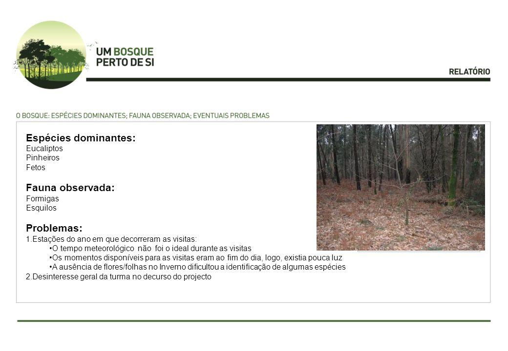 Espécies dominantes: Eucaliptos Pinheiros Fetos Fauna observada: Formigas Esquilos Problemas: 1.Estações do ano em que decorreram as visitas: O tempo