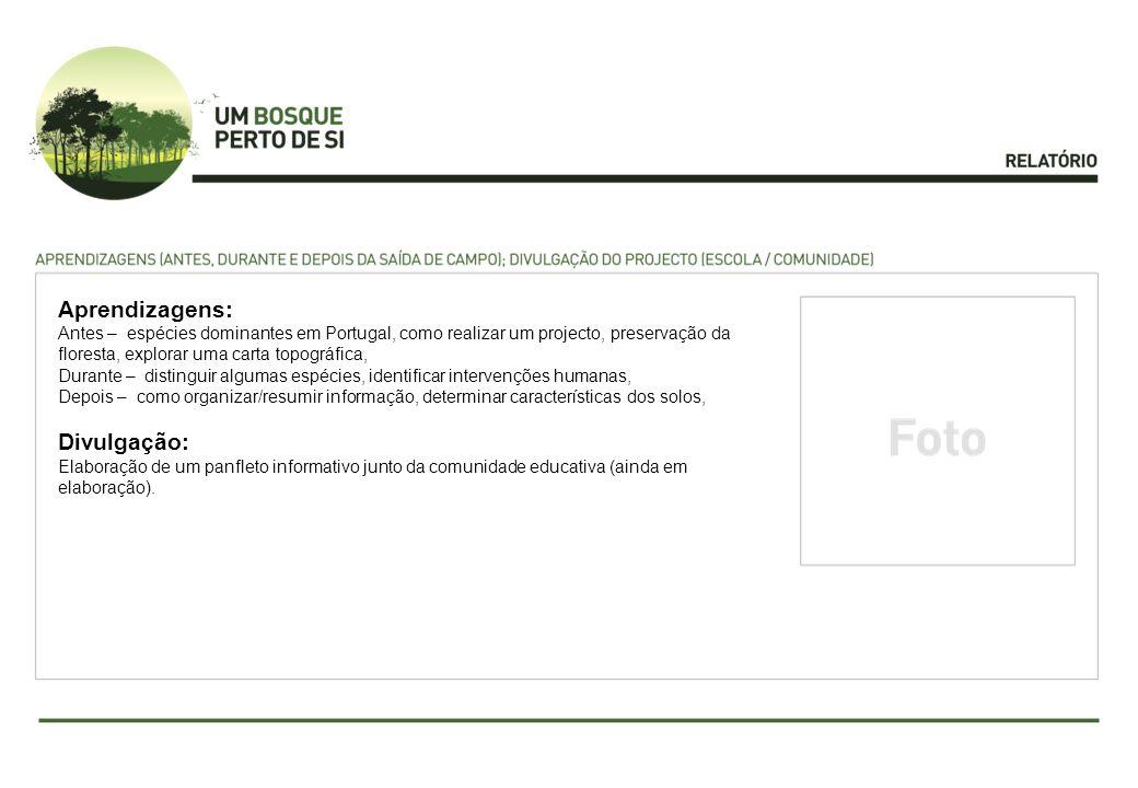 Aprendizagens: Antes – espécies dominantes em Portugal, como realizar um projecto, preservação da floresta, explorar uma carta topográfica, Durante –