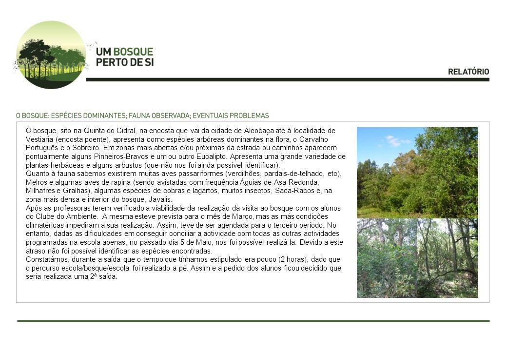 O bosque, sito na Quinta do Cidral, na encosta que vai da cidade de Alcobaça até à localidade de Vestiaria (encosta poente), apresenta como espécies arbóreas dominantes na flora, o Carvalho Português e o Sobreiro.