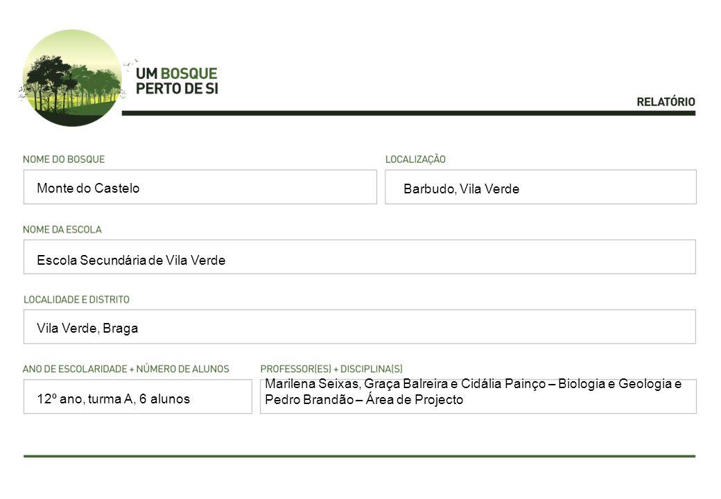 Barbudo, Vila Verde Escola Secundária de Vila Verde Vila Verde, Braga Monte do Castelo 12º ano, turma A, 6 alunos Marilena Seixas, Graça Balreira e Ci