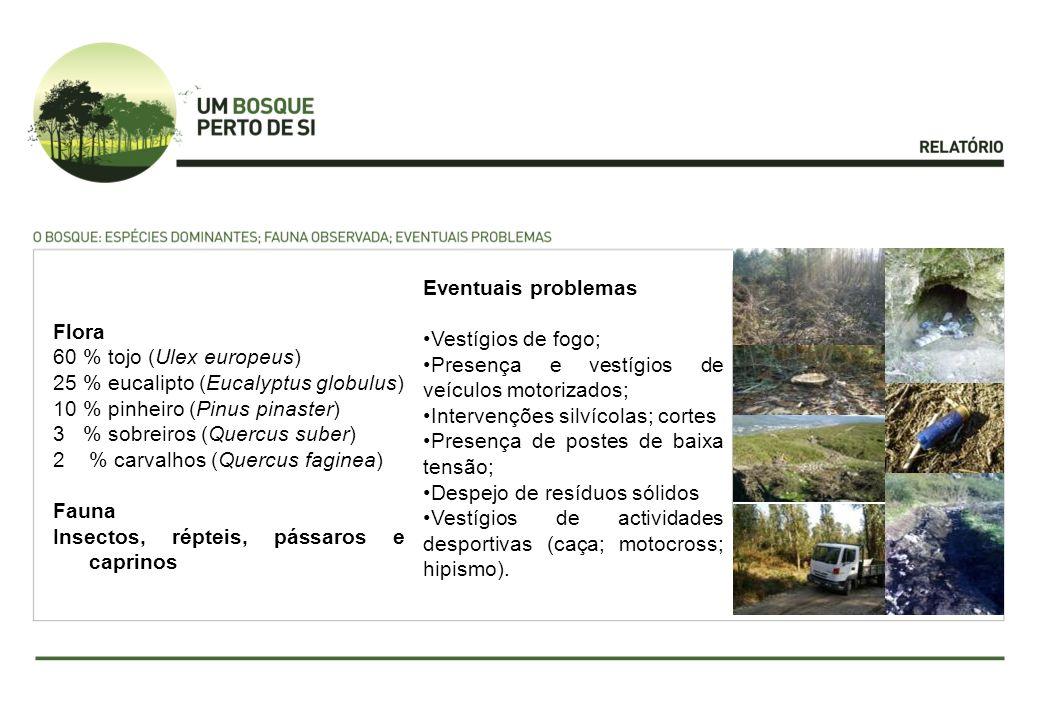 Flora 60 % tojo (Ulex europeus) 25 % eucalipto (Eucalyptus globulus) 10 % pinheiro (Pinus pinaster) 3 % sobreiros (Quercus suber) 2% carvalhos (Quercu
