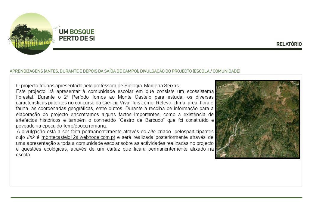 O projecto foi-nos apresentado pela professora de Biologia, Marilena Seixas. Este projecto irá apresentar à comunidade escolar em que consiste um ecos
