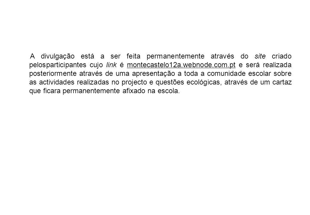 A divulgação está a ser feita permanentemente através do site criado pelosparticipantes cujo link é montecastelo12a.webnode.com.pt e será realizada po