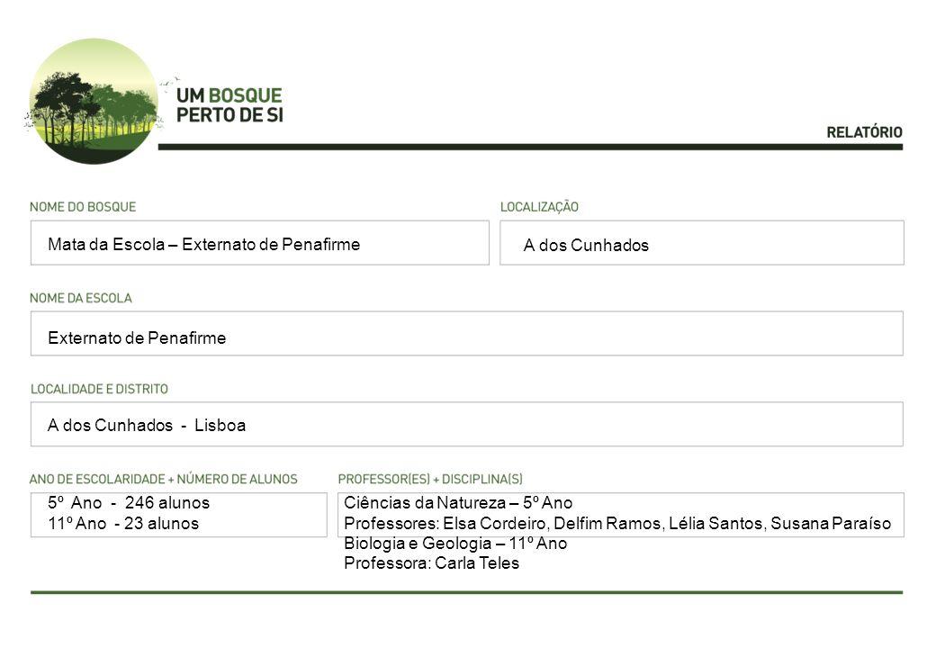 A dos Cunhados Externato de Penafirme A dos Cunhados - Lisboa Mata da Escola – Externato de Penafirme 5º Ano - 246 alunos 11º Ano - 23 alunos Ciências