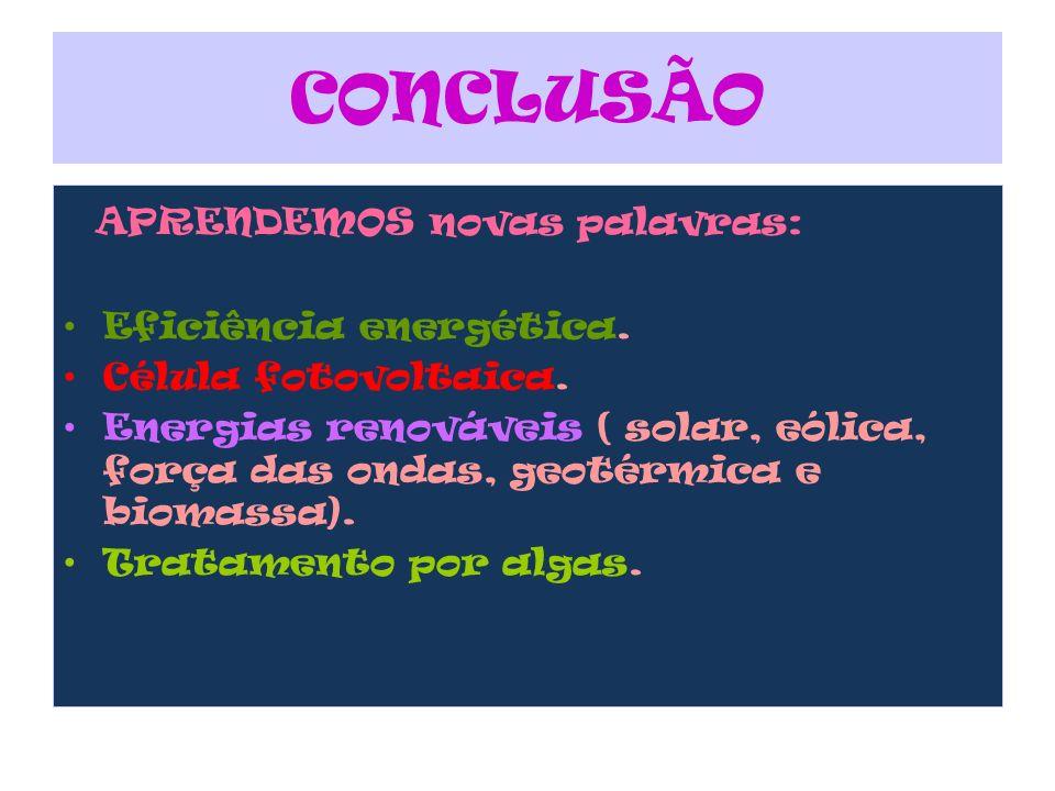 CONCLUSÃO A PRENDEMOS novas palavras: Eficiência energética. Célula fotovoltaica. Energias renováveis ( solar, eólica, força das ondas, geotérmica e b