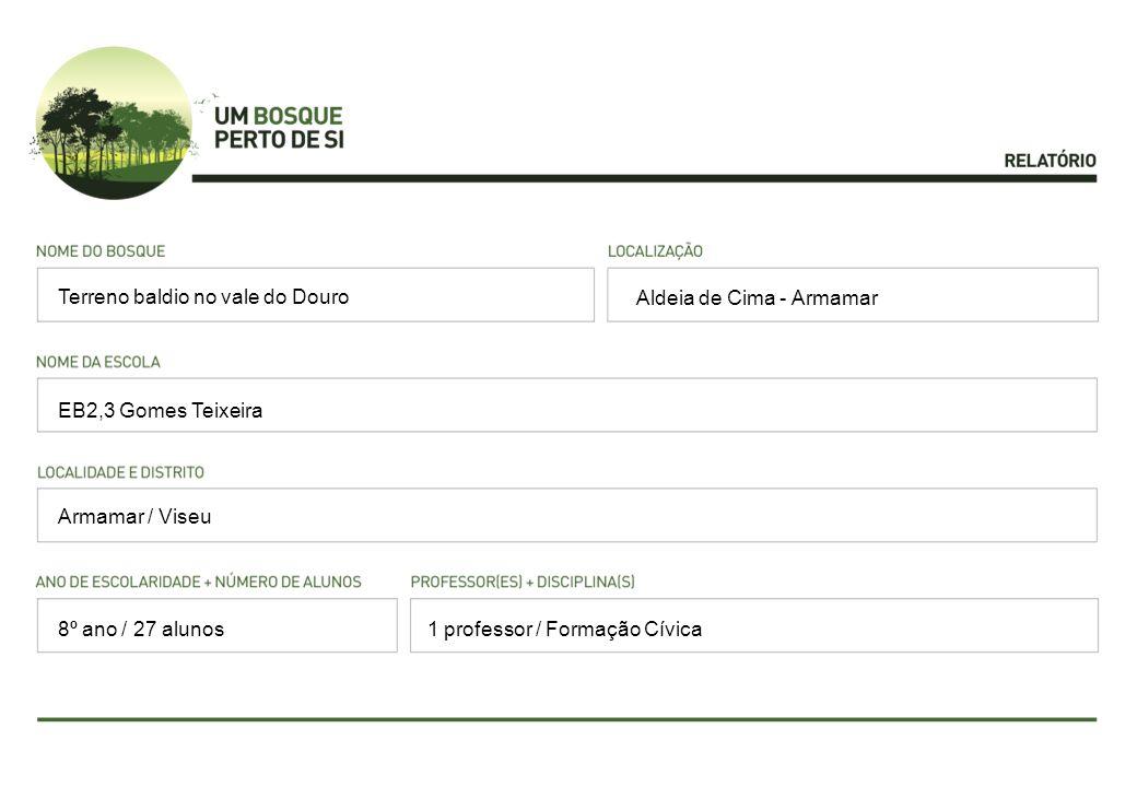 Aldeia de Cima - Armamar EB2,3 Gomes Teixeira Armamar / Viseu 1 professor / Formação Cívica Terreno baldio no vale do Douro 8º ano / 27 alunos