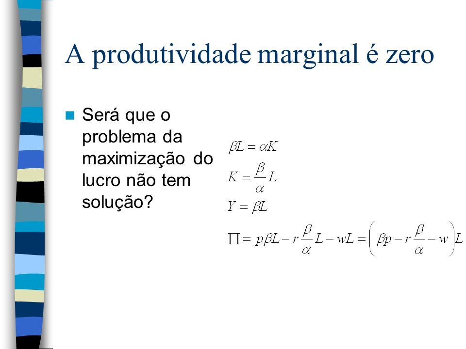 A produtividade marginal é zero Será que o problema da maximização do lucro não tem solução?